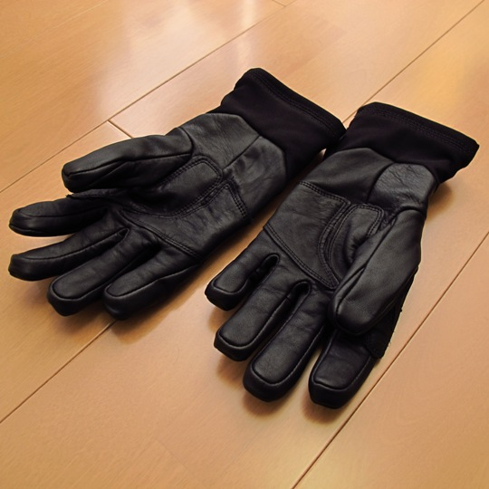 ARC'TERYX(アークテリクス)Stinger Glove(スティンガーグローブ)掌
