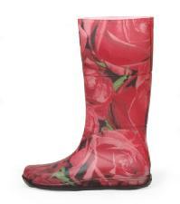 REGINA REGIS RAIN(レジーナ・レジス・レイン)ROSE