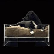 WOWBOW(ワウバウ)Mija Dog Bed(ミジャ・ドッグベッド)×イヌ