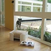 WOWBOW(ワウバウ)Mija Dog Bed&Dining Table(ミジャ・ドッグベッド&ダイニングテーブル)使用例